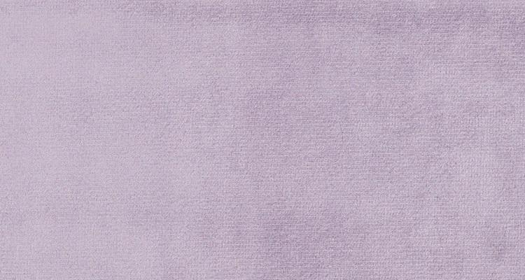 Astra 5279 Lavender
