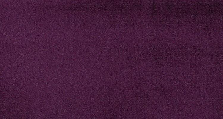 Astra 5281 Wineberry