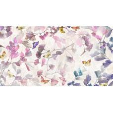 Loras violeta